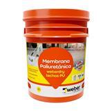 Membrana liquida Weber Techos PU 20kg para cubiertas muy deterioradas