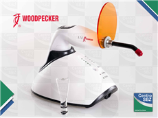 Lampara Led-F Woodpecker Inalambr.