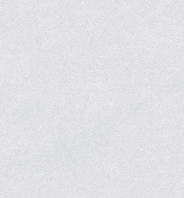Porcellanato Basaltina Pearl 60x60 Vite mate rectificado (1,80m2) + Pegamento de Regalo